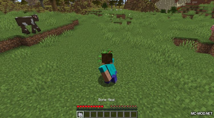 Extended Bone Meal mod for Minecraft (5)