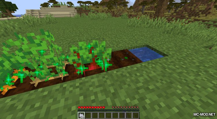 Extended Bone Meal mod for Minecraft (8)