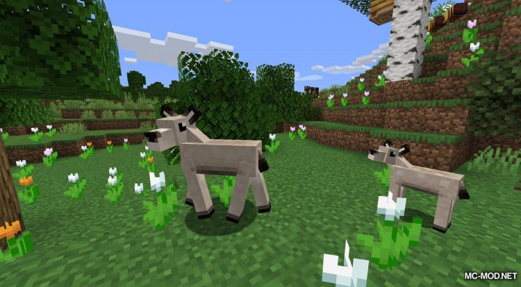 Gentle Fawn mod for Minecraft (14)