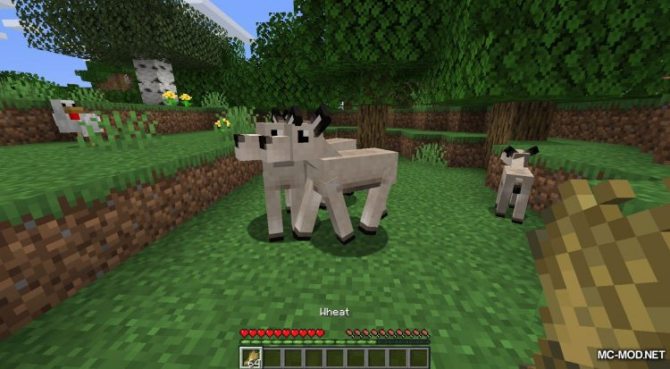 Gentle Fawn mod for Minecraft (5)