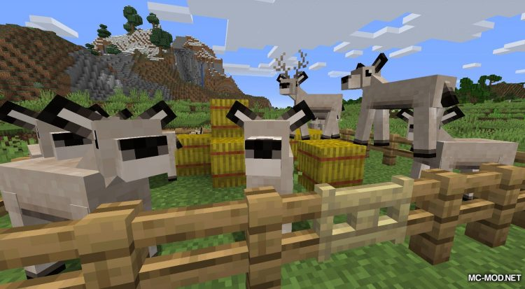 Gentle Fawn mod for Minecraft (7)
