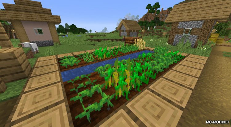 Plant In A Jar mod for Minecraft (4)