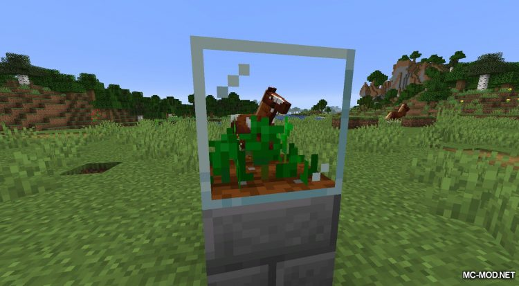Plant In A Jar mod for Minecraft (9)
