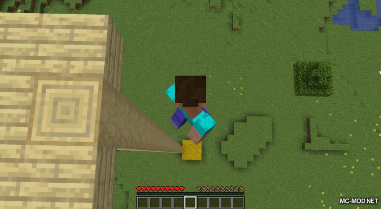 AC Hay Bales mod for Minecraft (8)