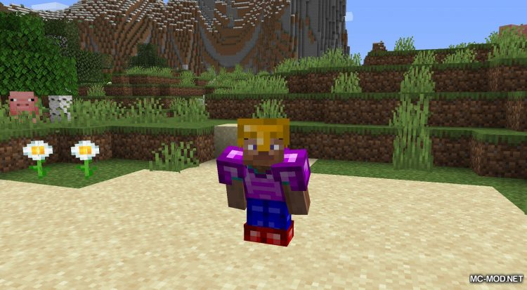 Evolution mod for Minecraft (10)
