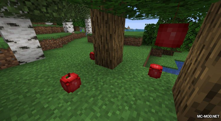 Rosy_s Placeable Items Mod mod for Minecraft (4)