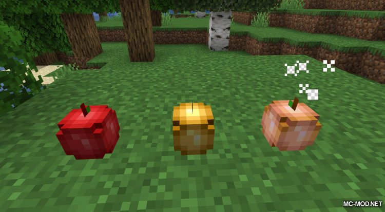 Rosy_s Placeable Items Mod mod for Minecraft (5)